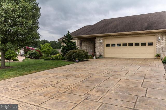 169 Daniel Court, STRASBURG, VA 22657 (#1002281292) :: Colgan Real Estate