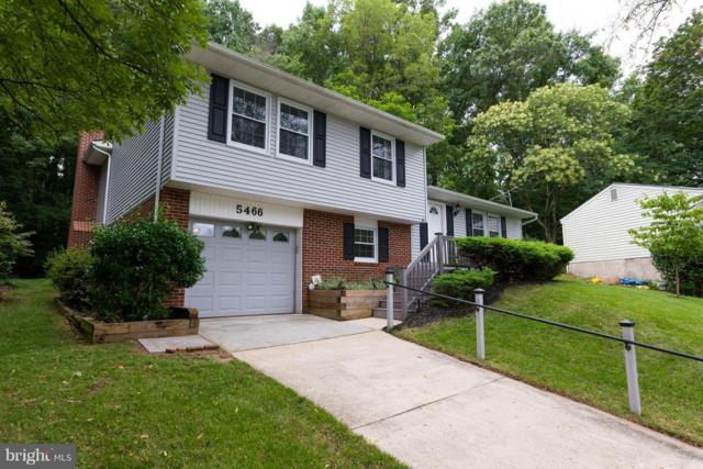 5466 Delphinium Court, COLUMBIA, MD 21045 (#1002281888) :: Remax Preferred | Scott Kompa Group