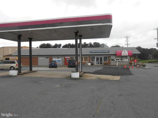 703 Pulaski Highway, ELKTON, MD 21921 (#1002282068) :: ExecuHome Realty