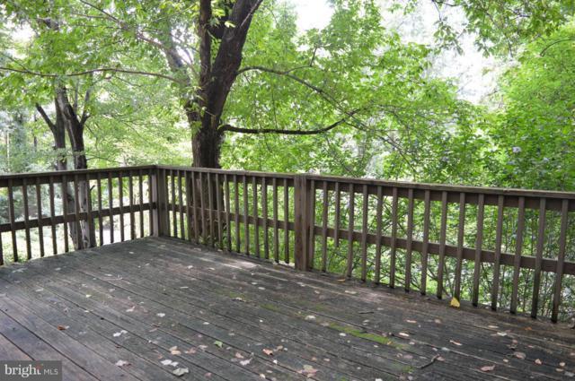 311 Golden Russet Drive, LINDEN, VA 22642 (#1002283204) :: Colgan Real Estate