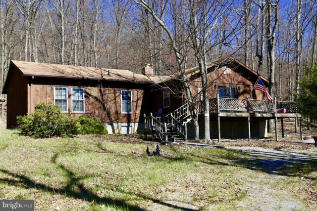 1235 Lost River Ridge, WARDENSVILLE, WV 26851 (#1002283382) :: ExecuHome Realty
