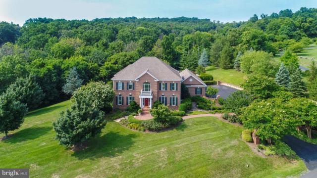 35191 Dornoch Court, ROUND HILL, VA 20141 (#1002286022) :: Colgan Real Estate