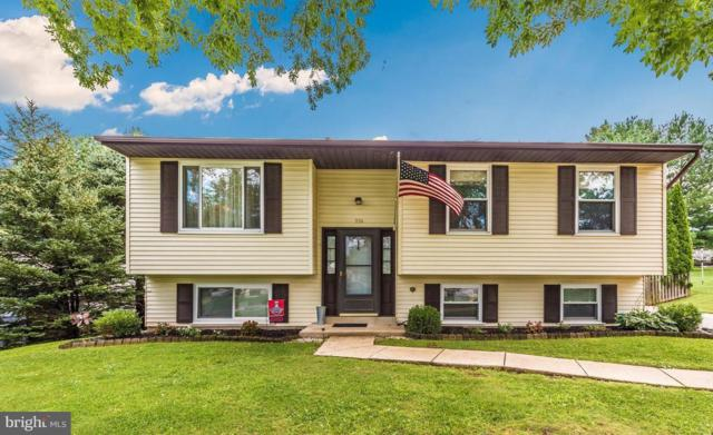 930 Wampler Lane, WESTMINSTER, MD 21158 (#1002286996) :: Colgan Real Estate