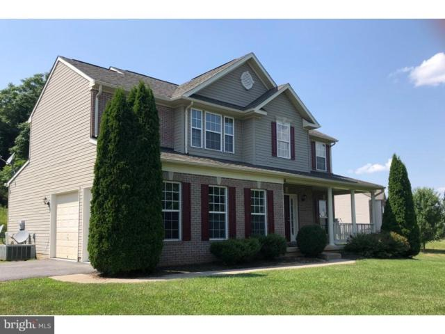 815 Crushed Apple Drive, MARTINSBURG, WV 25403 (#1002289058) :: Wes Peters Group Of Keller Williams Realty Centre