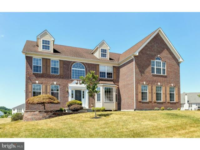 207 Remi Drive, NEW CASTLE, DE 19720 (#1002289690) :: The Windrow Group