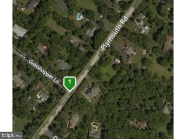396 Plymouth Road, AMBLER, PA 19002 (#1002292334) :: Erik Hoferer & Associates