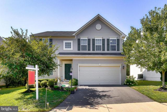 42241 St Huberts Place, CHANTILLY, VA 20152 (#1002292598) :: Colgan Real Estate
