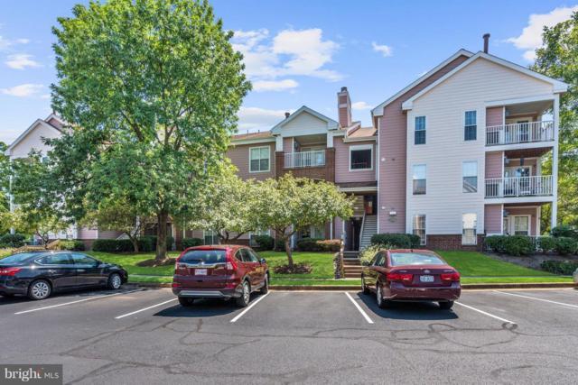 21014 Timber Ridge Terrace #201, ASHBURN, VA 20147 (#1002293966) :: LoCoMusings