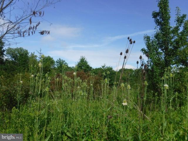 000 Cemetery Road, QUAKERTOWN, PA 18951 (#1002294502) :: LoCoMusings