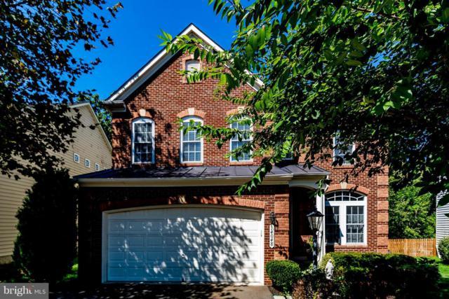 14048 Albert Way, GAINESVILLE, VA 20155 (#1002294652) :: Colgan Real Estate