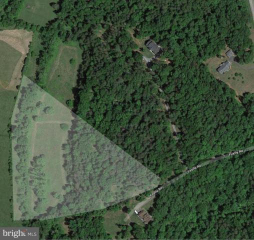 Firefly Road, CULPEPER, VA 22701 (#1002297788) :: Eng Garcia Grant & Co.