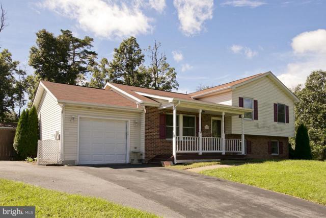 100 Tinoak Drive, STEPHENS CITY, VA 22655 (#1002298100) :: Remax Preferred | Scott Kompa Group