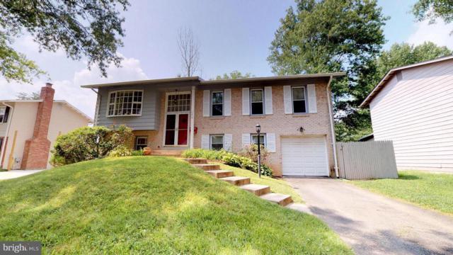 7514 Newburg Drive, LANHAM, MD 20706 (#1002302600) :: Colgan Real Estate