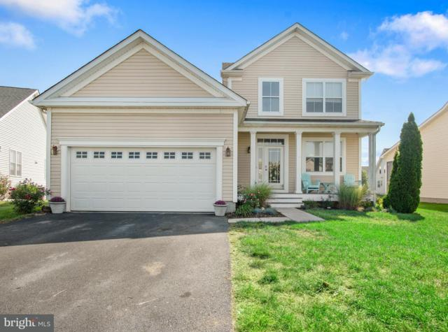 36898 Wood Duck Way, SELBYVILLE, DE 19975 (#1002302934) :: The Windrow Group