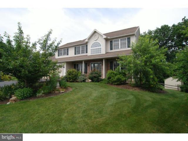 3124 S Wagner Circle, READING, PA 19608 (#1002303386) :: Colgan Real Estate