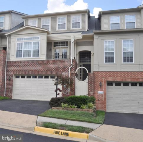 43224 Broxton Terrace, BROADLANDS, VA 20148 (#1002305956) :: Labrador Real Estate Team