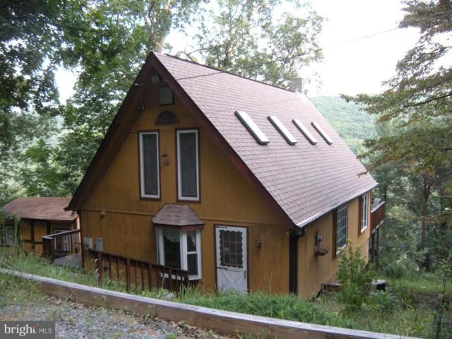 444 Nugget Drive, CAPON BRIDGE, WV 26711 (#1002306200) :: Remax Preferred | Scott Kompa Group