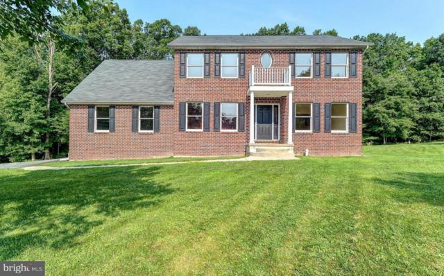 73 Michael Todd Road, NORTH EAST, MD 21901 (#1002306268) :: Great Falls Great Homes