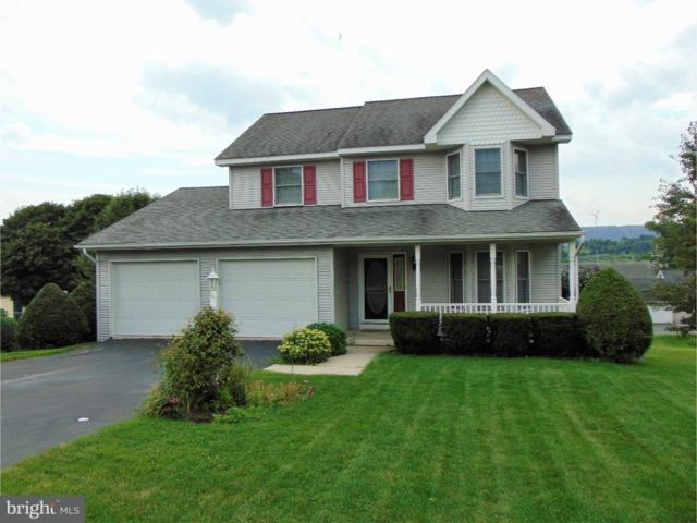 3 Greenhouse Lane, RINGTOWN, PA 17967 (#1002306458) :: The Craig Hartranft Team, Berkshire Hathaway Homesale Realty