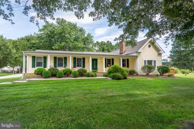 407 Elm Street, STEVENSVILLE, MD 21666 (#1002307330) :: Colgan Real Estate