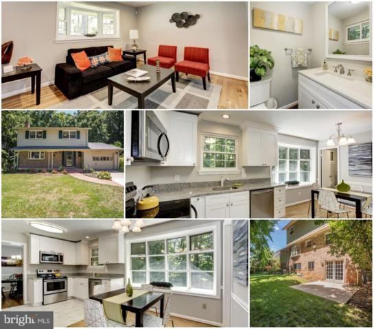 8461 Thames Street, SPRINGFIELD, VA 22151 (#1002316626) :: Great Falls Great Homes