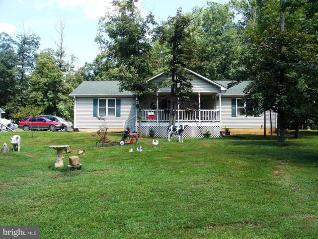 190 Grandview Drive, LURAY, VA 22835 (#1002333092) :: The Maryland Group of Long & Foster Real Estate