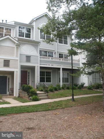 14417 Fallscliff Lane #14, CENTREVILLE, VA 20120 (#1002334540) :: Bob Lucido Team of Keller Williams Integrity
