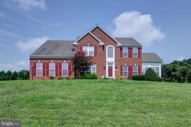 29406 Skipton Estates Drive, CORDOVA, MD 21625 (#1002334990) :: Colgan Real Estate