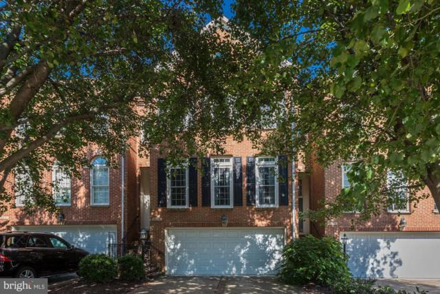18472 Perdido Bay Terrace, LEESBURG, VA 20176 (#1002336004) :: RE/MAX Executives