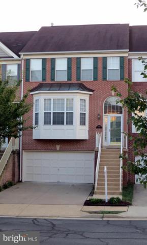 43089 Northlake Overlook Terrace, LEESBURG, VA 20176 (#1002347302) :: Colgan Real Estate