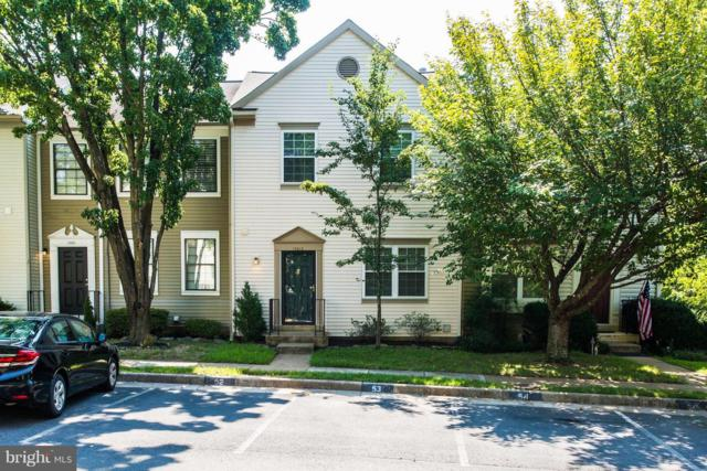 13613 Wildflower Lane, CLIFTON, VA 20124 (#1002350162) :: Great Falls Great Homes