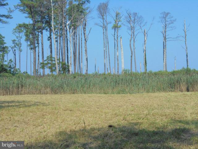 Hoopers Neck Road, TAYLORS ISLAND, MD 21669 (#1002351486) :: Atlantic Shores Realty