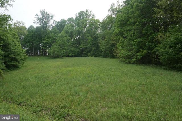 17220 Arrow Point Drive, ORANGE, VA 22960 (#1002356612) :: Dart Homes
