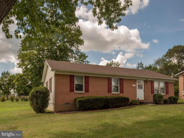101 Milam Drive, WINCHESTER, VA 22602 (#1002357876) :: The Withrow Group at Long & Foster