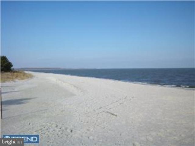 000 Flack Avenue, FREDERICA, DE 19946 (#1002377334) :: Atlantic Shores Realty