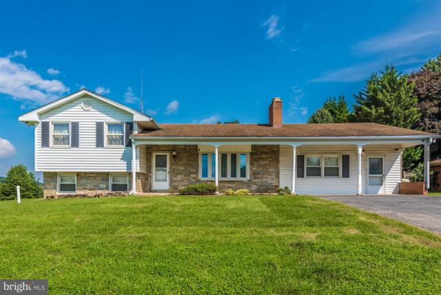 10004 Old National Pike, IJAMSVILLE, MD 21754 (#1002394946) :: Jim Bass Group of Real Estate Teams, LLC