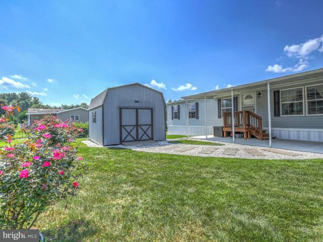 62 Maizefield Drive, SHIPPENSBURG, PA 17257 (#1002400704) :: Benchmark Real Estate Team of KW Keystone Realty