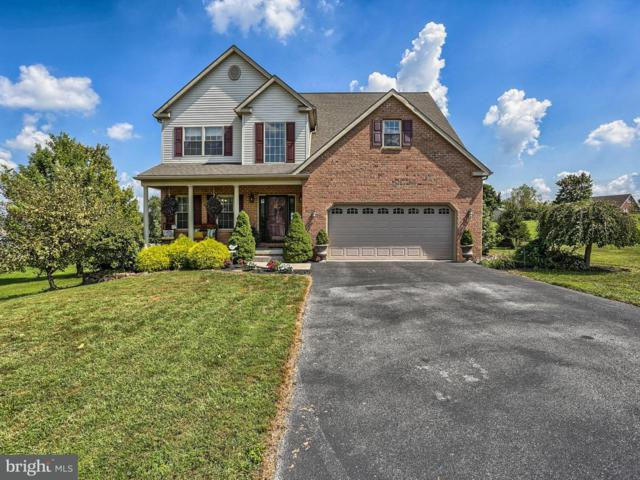 81 Lake Meade Drive, EAST BERLIN, PA 17316 (#1002403354) :: Keller Williams of Central PA East