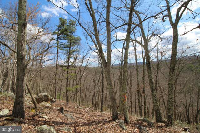 Lookout Ridge, LOST CITY, WV 26810 (#1002407402) :: Remax Preferred | Scott Kompa Group