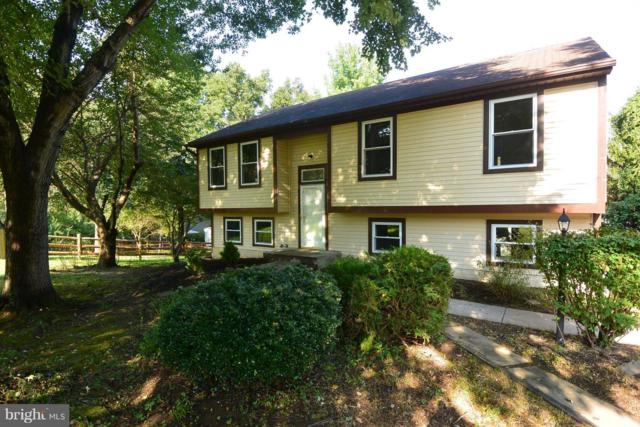 6715 Hawkeye Run, COLUMBIA, MD 21044 (#1002414254) :: Colgan Real Estate