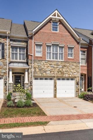 43490 Castle Harbour Terrace, LEESBURG, VA 20176 (#1002571886) :: RE/MAX Executives