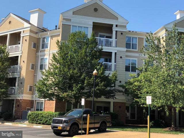 2204 Westcourt Lane #203, HERNDON, VA 20170 (#1002586702) :: The Withrow Group at Long & Foster