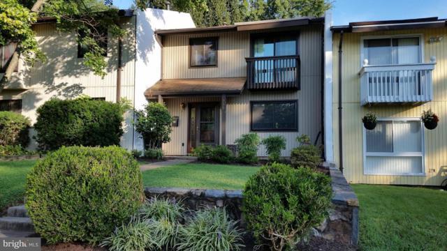 239 Greenfield Court, STERLING, VA 20164 (#1002596368) :: Colgan Real Estate