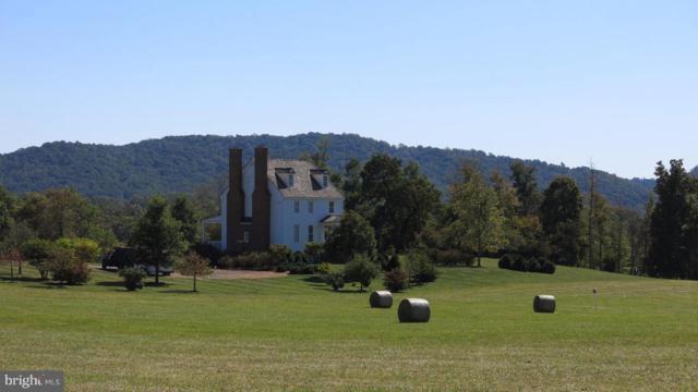 22 Quail Hill Lane, FLINT HILL, VA 22627 (#1002596802) :: Colgan Real Estate