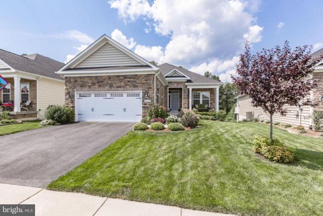 6023 Drewys Bluff Drive, FREDERICKSBURG, VA 22407 (#1002597454) :: Colgan Real Estate