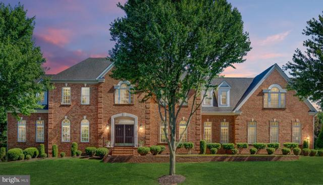 41605 Swiftwater Drive, LEESBURG, VA 20176 (#1002772136) :: Remax Preferred | Scott Kompa Group