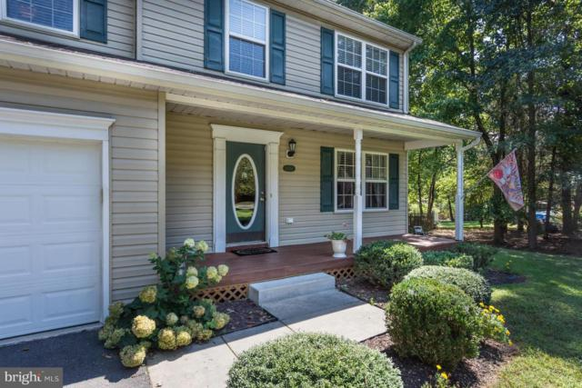 10769 Glenola Road, CHESTERTOWN, MD 21620 (#1002775292) :: The Gus Anthony Team