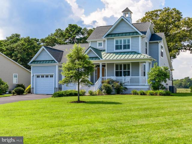 37094 Stillwater Cove, SELBYVILLE, DE 19975 (#1002775844) :: The Windrow Group