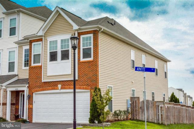41821 Apatite Square, ALDIE, VA 20105 (#1002776064) :: Circadian Realty Group