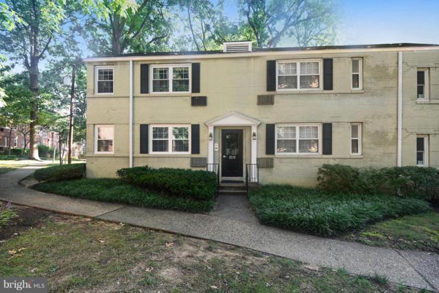 205 Trenton Street 205-1, ARLINGTON, VA 22203 (#1002795806) :: Gail Nyman Group